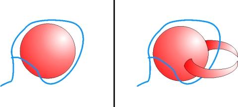 Una pelota normal y una pelota deformada con dos cuernos. Ninguna de ellas puede pillarse con un lazo.