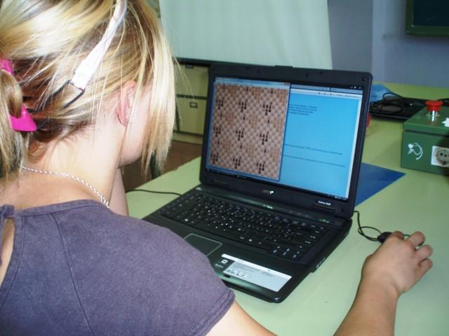 Juego de ajedrez en el toro
